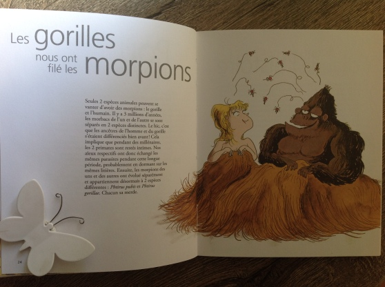 morpions et gorilles